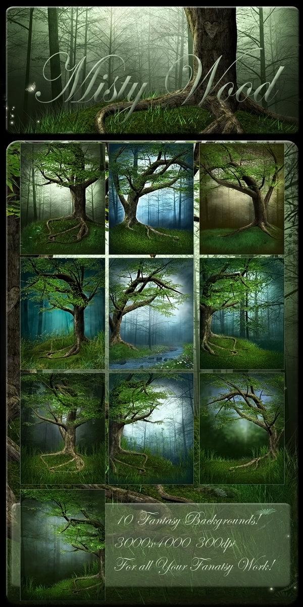 Misty-Wood.jpg