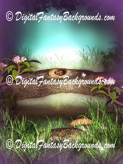 Mushroom_Fantasy3.jpg