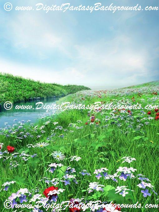 SpringMeadow2.jpg
