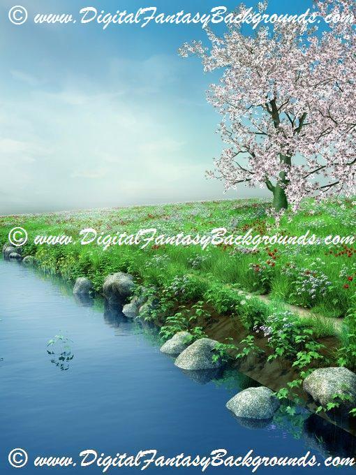 SpringMeadow3.jpg