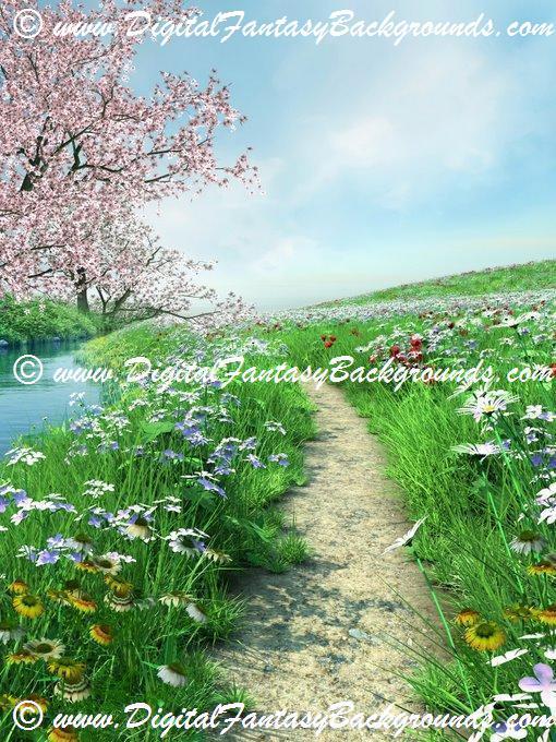 SpringMeadow4.jpg