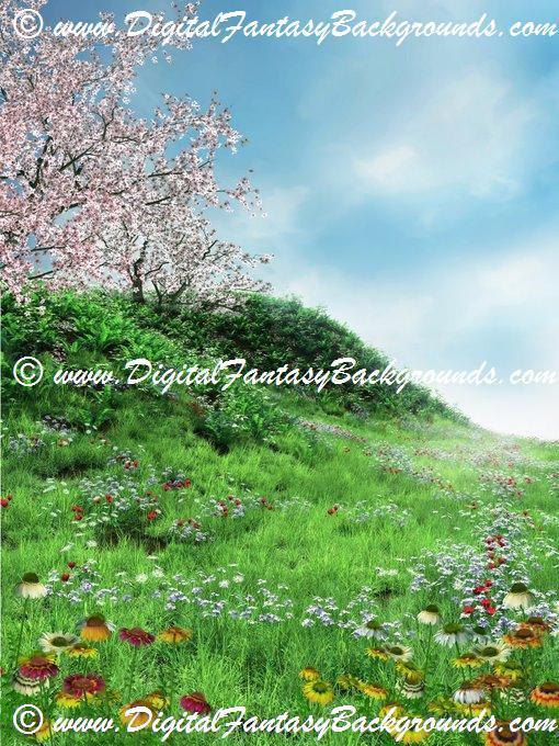 SpringMeadow5.jpg