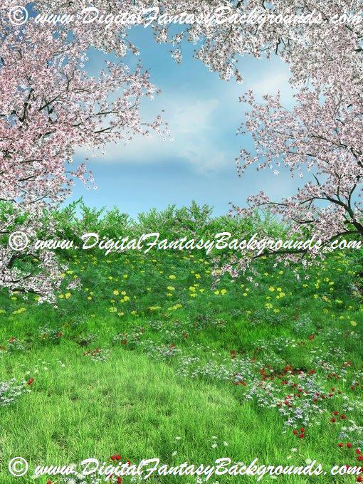 SpringMeadow6.jpg