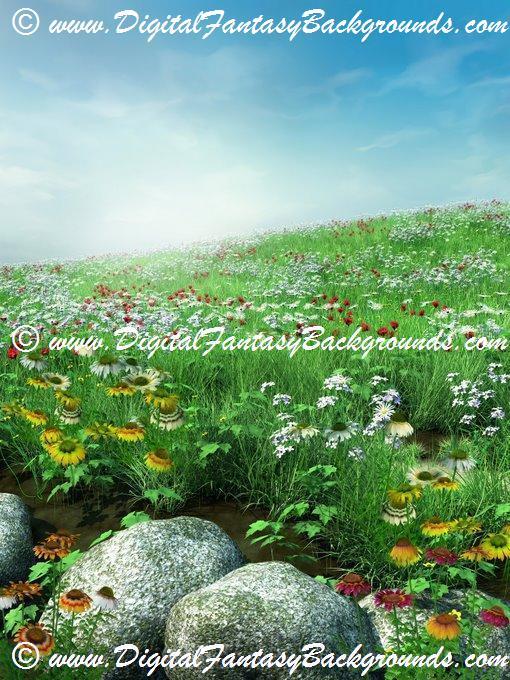 SpringMeadow7.jpg